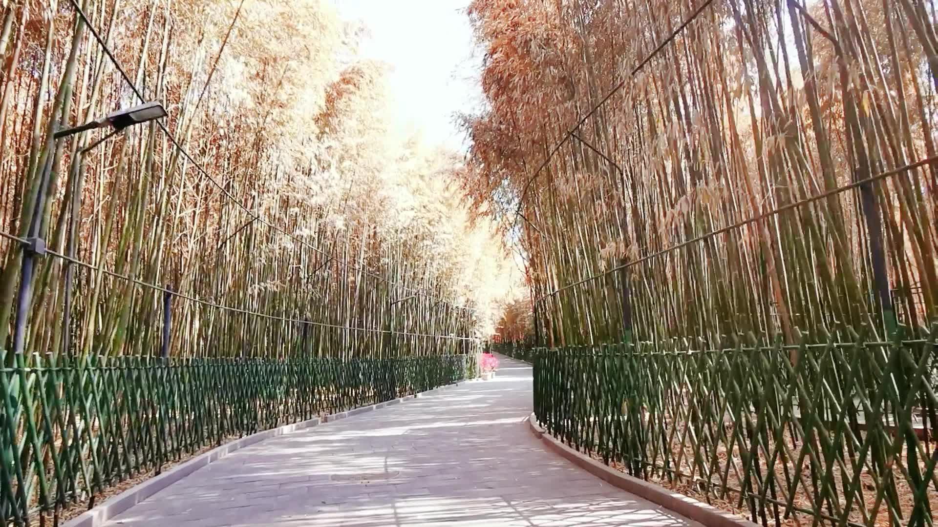 Vue du Temple Hongluo
